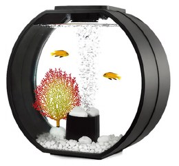 Fish R Fun Deco Med Fish Tank With Pump Filter & Light 20 Litre Black