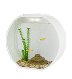 Fish R Fun Deco Round Tank 20 Litres White