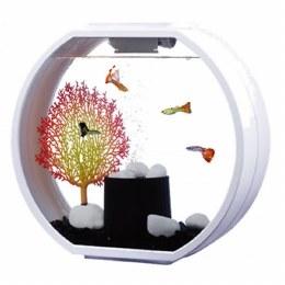 Fish R Fun Deco Mini Fish Tank With Pump Filter & Light 10 Litre White