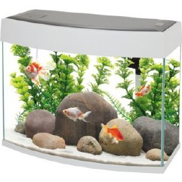 Fish R Fun Panoramic Fish Tank With Pump Filter & Light 20 Litre White