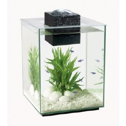 Fluval Chi 2 19 Litres - Special Offer