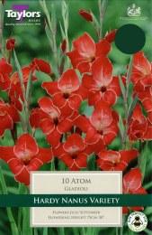 Gladioli Atom