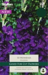 Gladioli Mombasa