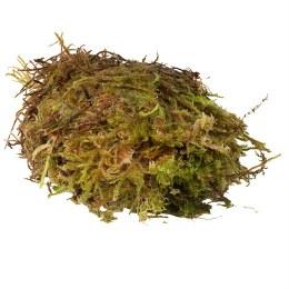 Habistat Sphagnum Moss Small 250g