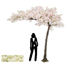 Cherry Blossom Half Arch Tree With Pink Flowers 320cm - Rental Only