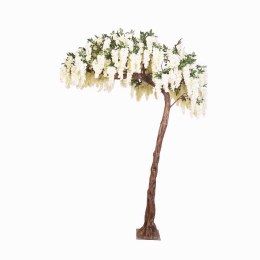 Wisteria Blossom Half Arch Tree With Cream Flowers 300cm - Rental Only