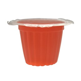 Komodo Jelly Pots Strawberry Flavour - Single