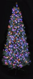 500 Premier Treebrights Christmas Lights with Pink Purple Orange & Turquoise colours