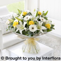 Lemon and White Sympathy Hand-Tied Extra Large