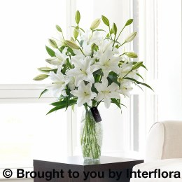 Luxury White Oriental Lily Sympathy Vase