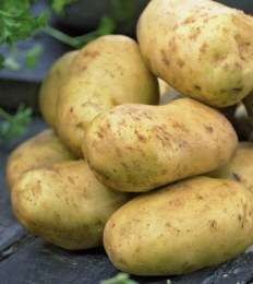 Maris Peer Seed Potatoes 10 Pack - Second Early