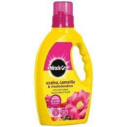 Miracle-Gro Azalea Camellia & Rhododendron Liquid Plant Food 1 Litre