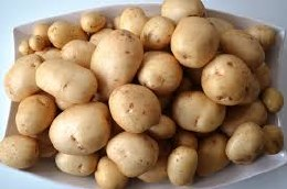 Pentland Javelin Potato 10 pack - First Early