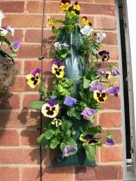 Flower Bag For Hanging Basket Plants