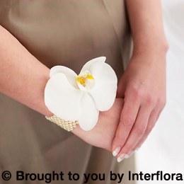 Pure White Orchid Wrist Corsage