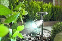 Stainless Steel Solar Spotlight