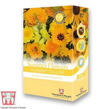 Bee Friendly - Summer Flowers Sunshiny Yellow