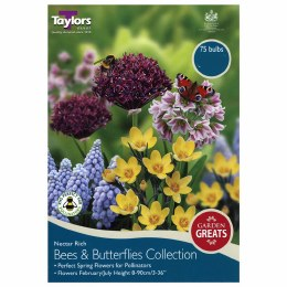 Taylor's Bulbs Bees & Butterflies Collection