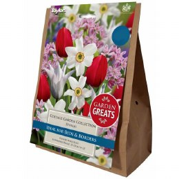 Taylor's Bulbs Classic Collection Cottage Garden Collection
