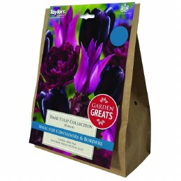 Taylor's Bulbs Classic Collection Dark Tulip Collection