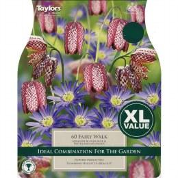 Taylor's Bulbs Fairy Walk XL Value Pack