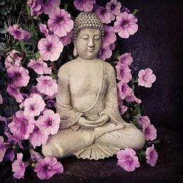 Budhha Tranquil 30cm