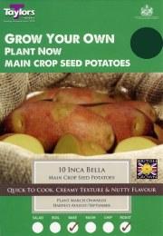 Inca Bella Seed Potatoes 8 Pack - Main Crop