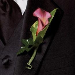 Calla Lily Buttonhole - Deep Pink