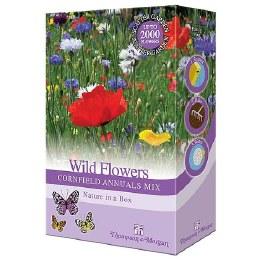 Bee Friendly - Willdflowers Cornfield Annuals Mix