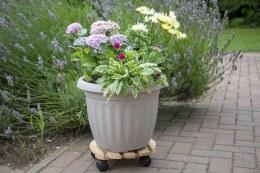 Wooden Pot Trolley 12in