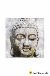 La Hacienda  Garden Canvas Buddha 79x79x4cm