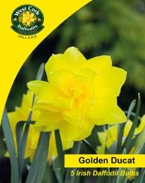 Daffodil - Narcissus Golden Ducat - 3kg