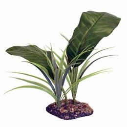 Komodo Tropical Canopy