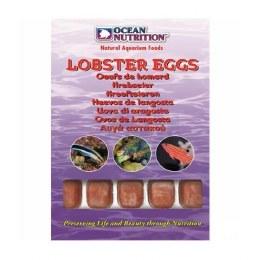 Ocean Nutrition Lobster Eggs