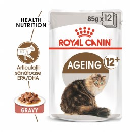 Royal Canin Ageing Pouch