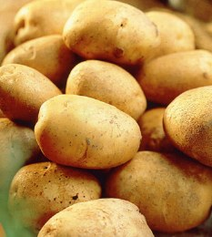 Record Seed Potatoes 2kg - Early Maincrop