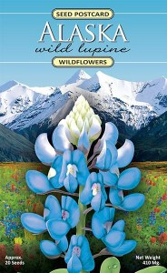 Arctic Lupine Seed Packet