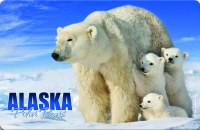 Polar Bears Alaska Placemat