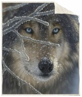 Wolf Face Sherpa Throw
