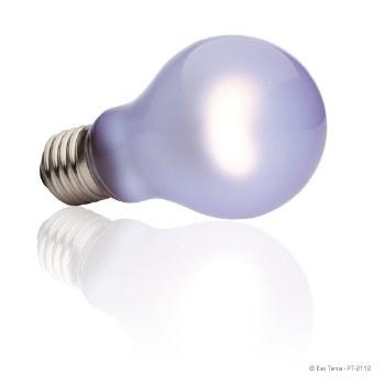 Daytime Heat Lamp 100W