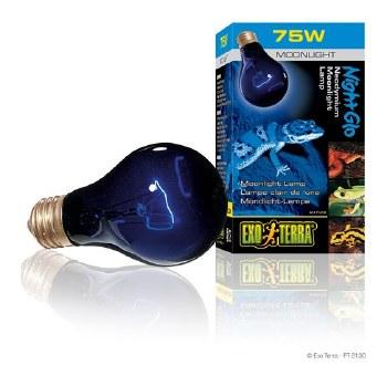 Night Heat Lamp 75W