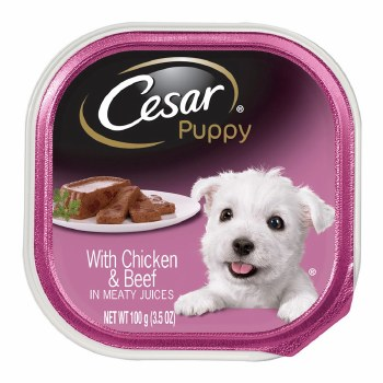 Cesar Puppy with Chicken and Beef Dog Food Trays 3.5oz