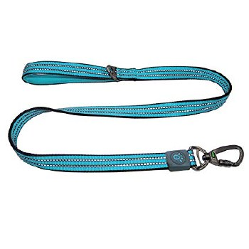 VARIO 4ft Leash Med Turq