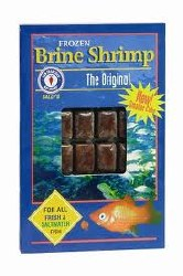 Frozen Brine Shrimp for all fresh and saltwater fish 30 cubes 3.5oz