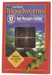 Frozen Bloodworms for all Freshwater Fish 36 cubes 1.75oz