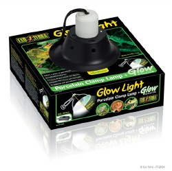 Glow Light Medium Medium 8.5