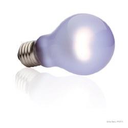Daytime Heat Lamp 100 watt