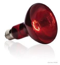 Infrared Basking Spot R30 / 15