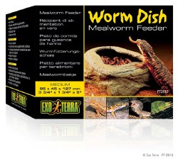 MealWorm Dish Feeder