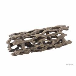 Cholla Cactus Skeleton, Large